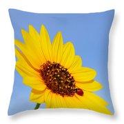 Sunflower And Ladybird Beetle 2am-110488 Throw Pillow