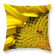 Sunflower And Ladybug Throw Pillow