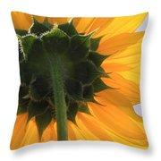 Sunflower Back Throw Pillow