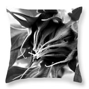 Sunflower Beginning Throw Pillow
