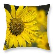 Sunflower Blossom Throw Pillow