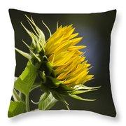 Sunflower Bright Side Throw Pillow