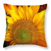 Sunflower Bright Throw Pillow