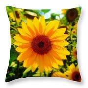 Sunflower Centered Throw Pillow