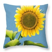 Sunflower Charm Throw Pillow