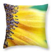 Sunflower Close Up Throw Pillow