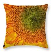 Sunflower Digital Painting Throw Pillow
