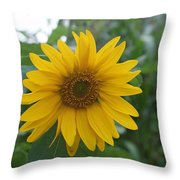 Sunflower Directly... Throw Pillow
