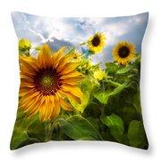 Sunflower Dream Throw Pillow