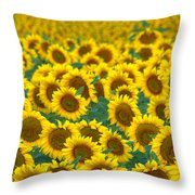 Sunflower Explosion Throw Pillow