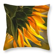 Sunflower Farm 1 Throw Pillow