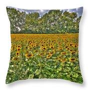 Sunflower Fields Ford World Headquarters Dearborn Mi Throw Pillow