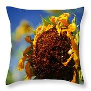 Sunflower Four Throw Pillow