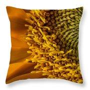 Sunflower Grace Throw Pillow