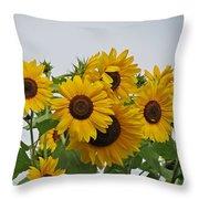 Sunflower Group Throw Pillow