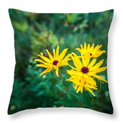 Sunflower Group Session Throw Pillow