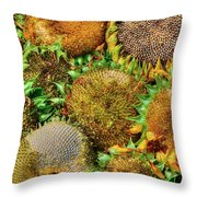 Sunflower Harvest Throw Pillow