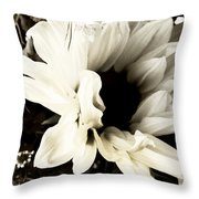 Sunflower In Black And White 3 Throw Pillow by Tanya Jacobson-Smith