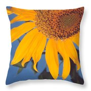Sunflower In The Corner Throw Pillow