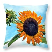 Sunflower In The Sky Throw Pillow by Annette Allman