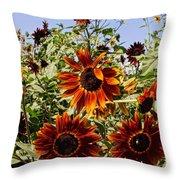 Sunflower Layers Throw Pillow