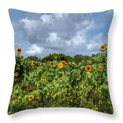 Sunflower Maze Throw Pillow