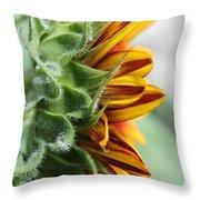 Sunflower Named The Joker Throw Pillow