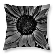 Sunflower In Black And White Throw Pillow