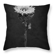 Sunflower Number 5 B W Throw Pillow
