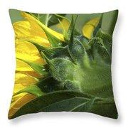 Sunflower Opening Throw Pillow
