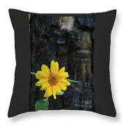 Sunflower Power Throw Pillow