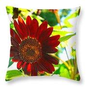 Sunflower - Red Blazer - Luther Fine  Art Throw Pillow