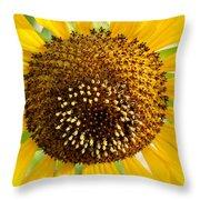 Sunflower Reproductive Center Throw Pillow