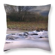 Sunflower River Throw Pillow