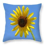 Sunflower Square Throw Pillow