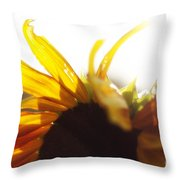 Sunflower Sunlight Throw Pillow