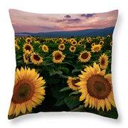 Sunflower Sunset II Throw Pillow