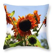 Sunflower Symphony Throw Pillow by Karen Wiles