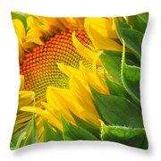 Sunflower Unfolding  Throw Pillow