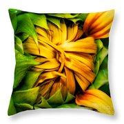 Sunflower Volunteer Throw Pillow