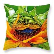 Sunflower Volunteer Half Bloom Throw Pillow