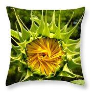 Sunflower Whirl Throw Pillow