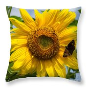 Sunflower With Butterfly Throw Pillow