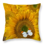 Sunflower With White Butterfly Throw Pillow