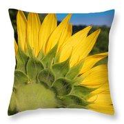 Sunflower1253 Throw Pillow