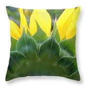 Sunflower1261 Square Throw Pillow