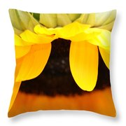 Sunflowers 3 Throw Pillow