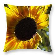 Sunflowers Alive And Free Throw Pillow