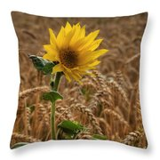 Sunflowers At Corny Throw Pillow