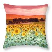 Sunflowers, Corbada, Spain Throw Pillow